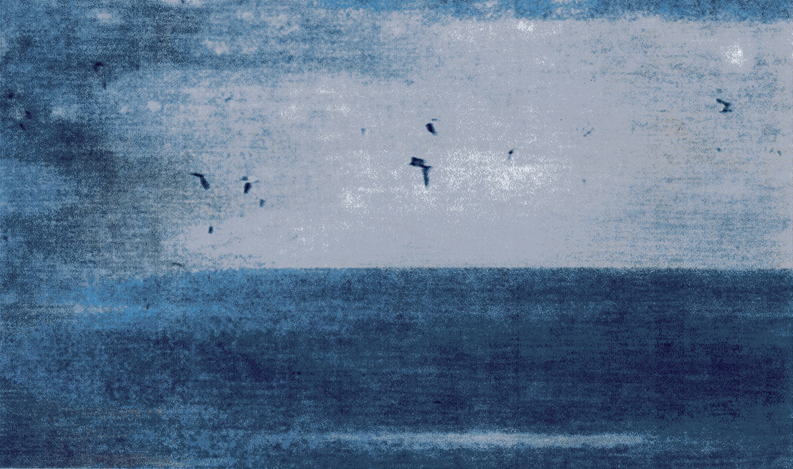 The birds followed them out into the vastness of the sea, after Herz aus Glas from Werner Herzog, 2014