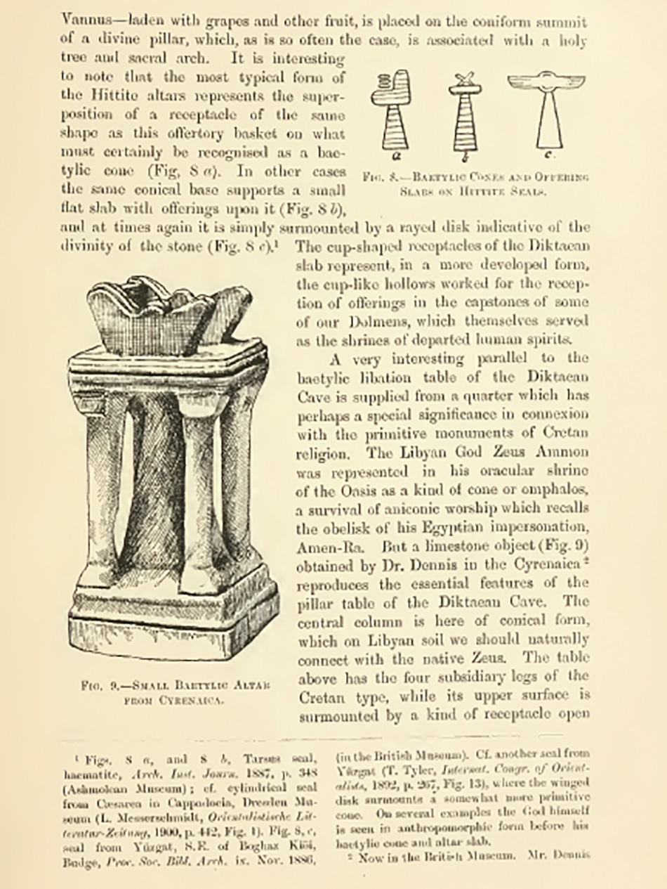arborescence and the pillar cult_DavidAmaral002