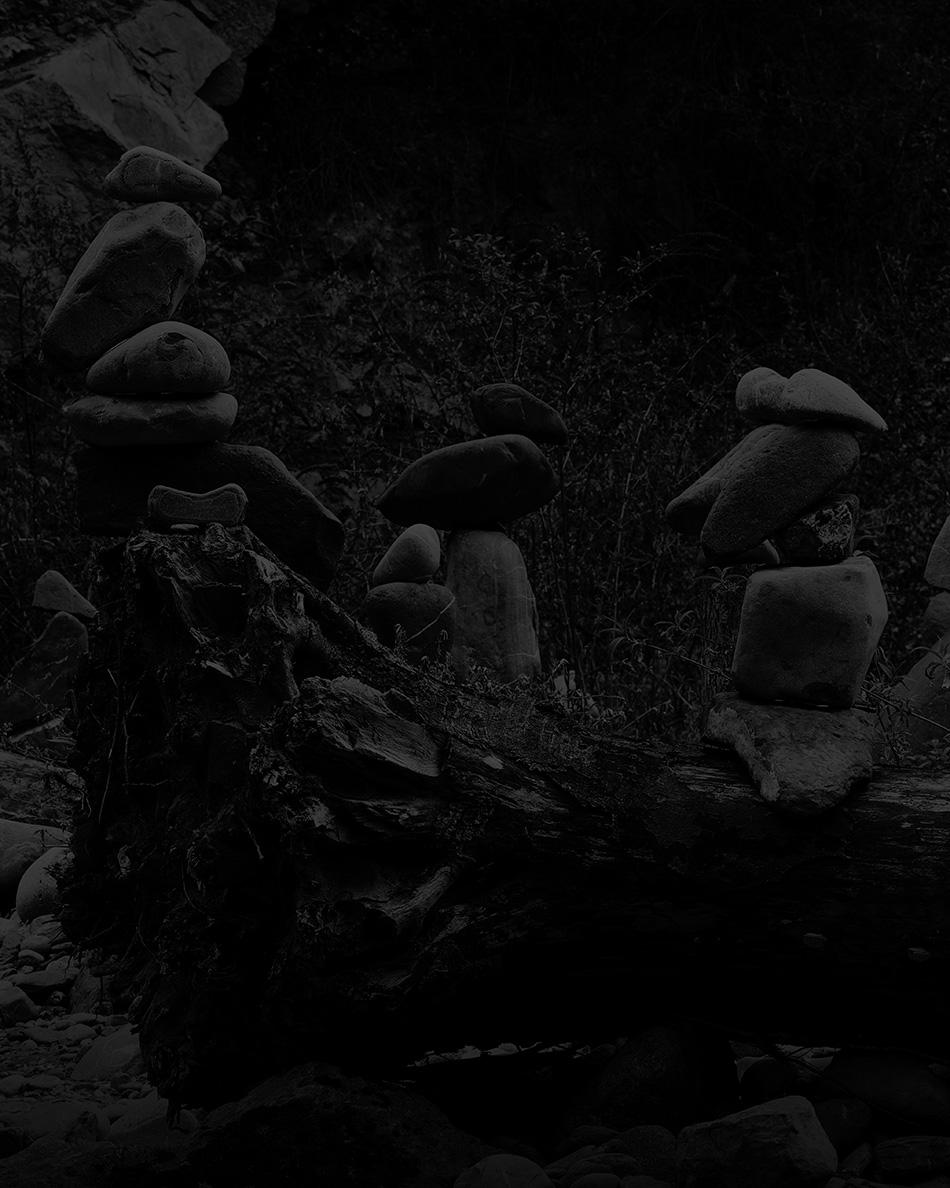 arborescence and the pillar cult_DavidAmaral008