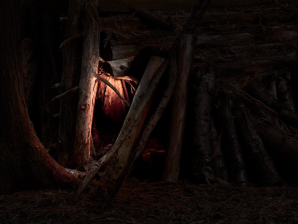 arborescence and the pillar cult_DavidAmaral016