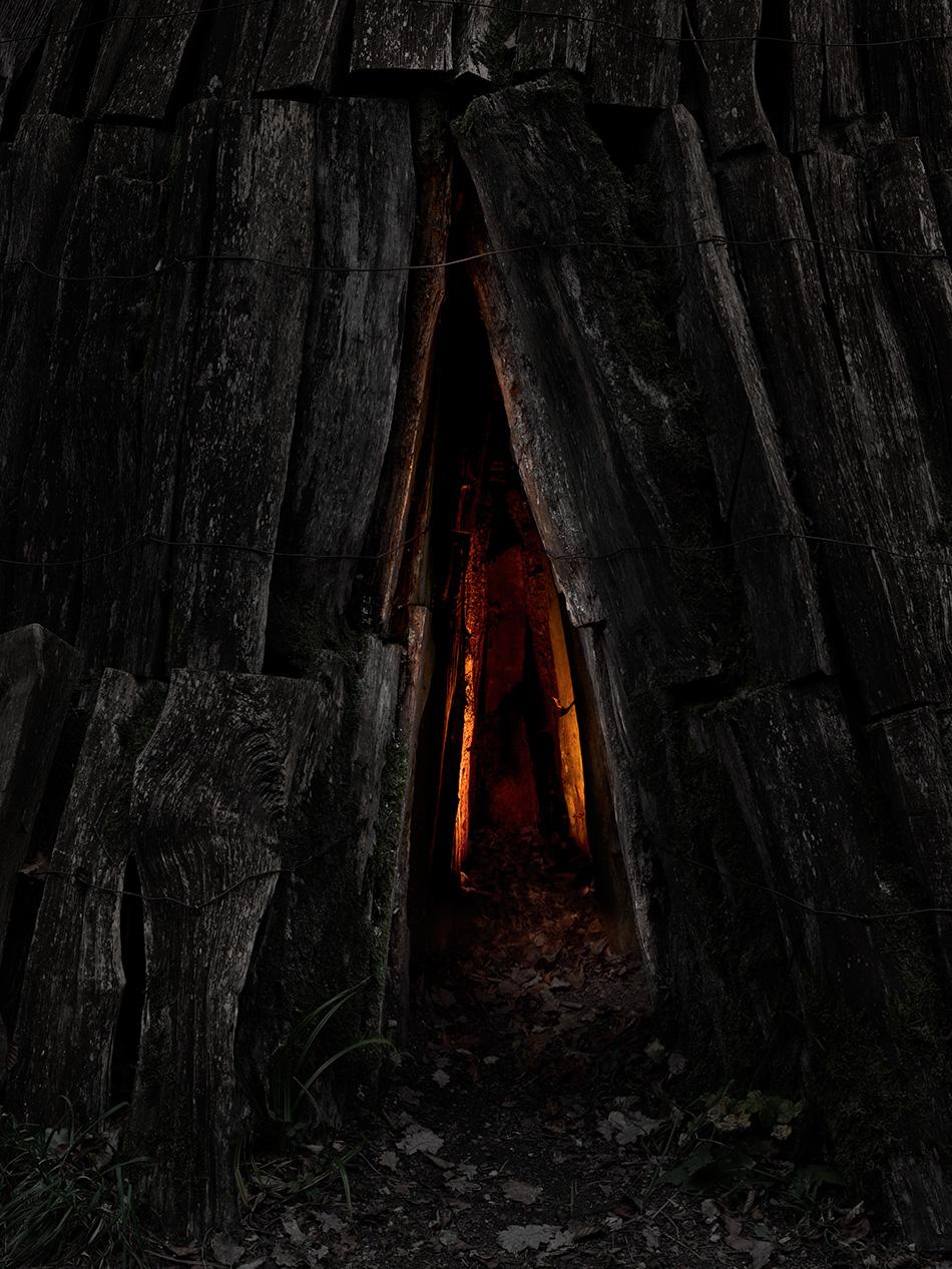 arborescence and the pillar cult_DavidAmaral017