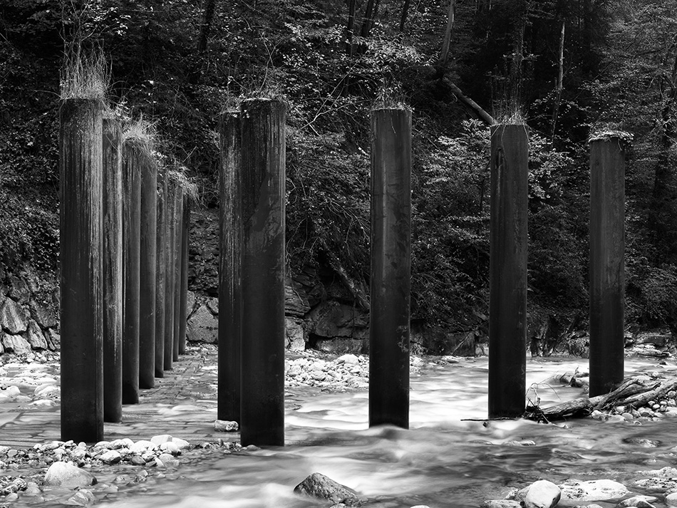 arborescence and the pillar cult_DavidAmaral022