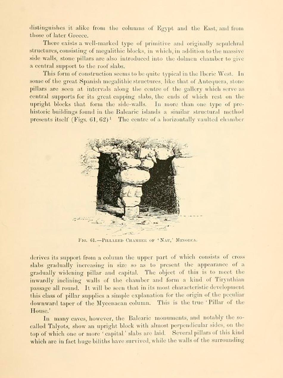 arborescence and the pillar cult_DavidAmaral041