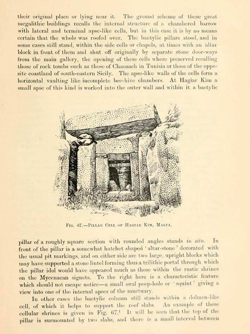 arborescence and the pillar cult_DavidAmaral042