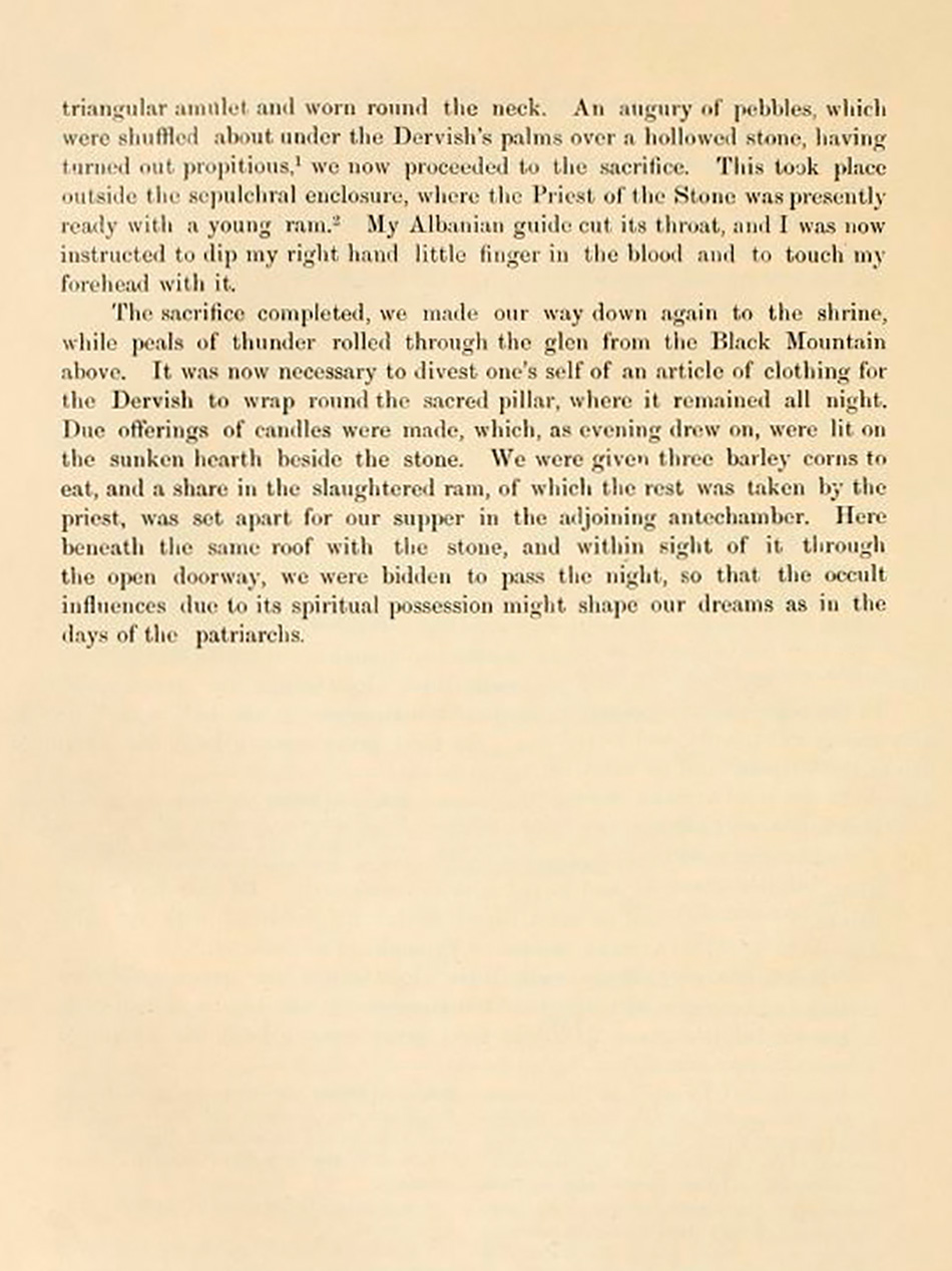arborescence and the pillar cult_DavidAmaral044